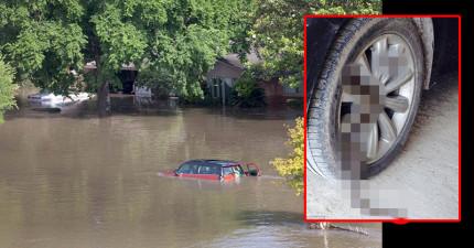 美國德州近日的大水災造成了16人死亡,還把上千條「長條狀惡魔」都逼到了民眾的家裡面了...!