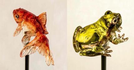 你可能會以為這些栩栩如生的動物是琉璃藝術品...但它們居然是「可食用」的?!