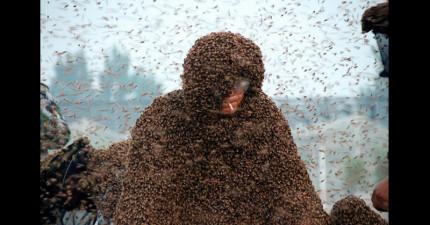 這位刷新世界紀錄的養蜂人讓110萬隻蜜蜂爬滿全身,為了破紀錄他被蜜蜂螫的次數太恐怖了!
