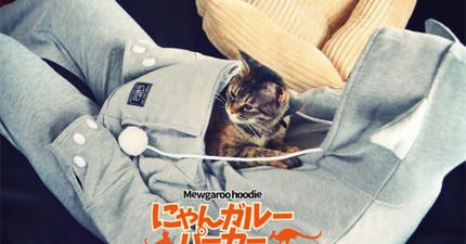 這可不是普通的可愛連帽衣,它會讓你變成你的寵物的袋鼠媽媽!