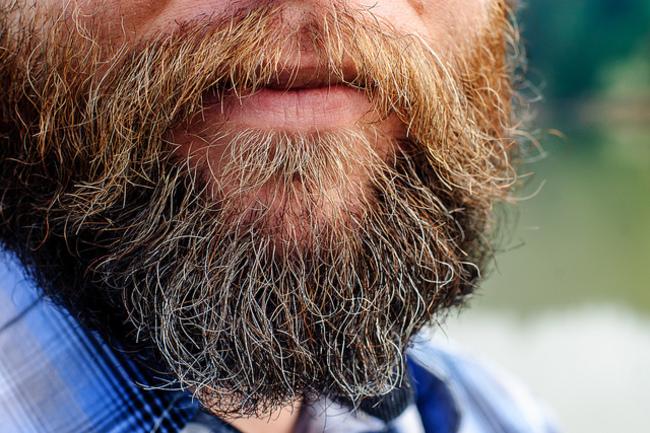 鬍子和馬桶有什麼關聯?這個研究報告指出:馬桶還比較乾淨!