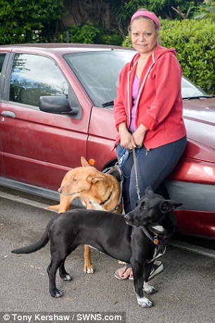 為了不送走心愛的狗狗,這名女人放棄緊急政府居所,4個月來以車為家,以湯為食!