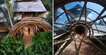 這名女人拋棄了工作,就為了去跑峇里島建造這些會讓你一走進去就出不來的「絕美環保竹屋」!