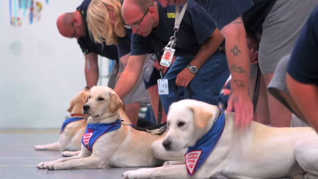"""""""Typically...prison-raised puppies have a higher chance of graduating than our puppies that are raised outside,"""" a member of Leader Dogs for the Blind commented."""