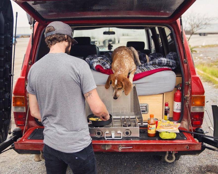 dog-traveling-car-motorcycle-maddie-on-road-19