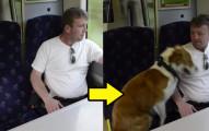 這名男子在上班途中竟在火車上撞見了他鎖在家中的狗狗,一探究下來才發現案情並不單純!
