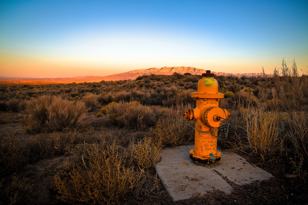 No one knows who invented the fire hydrant, because its patent was destroyed in a fire.