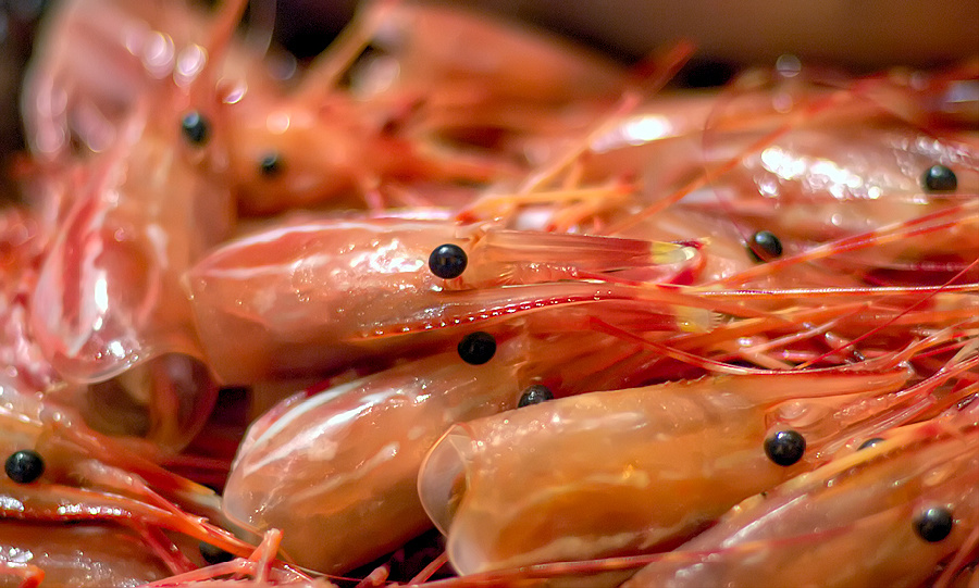 A shrimp's heart is inside of its head.