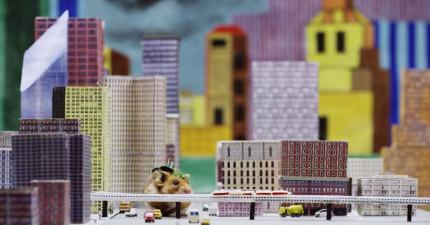 這隻「小倉鼠哥吉拉」正在毀滅一座城市,但可愛到你絕對無法生他的氣!