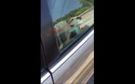 有人打電話給警方去看一台車,結果裡面看到的景象讓人看得氣到腦充血啊!