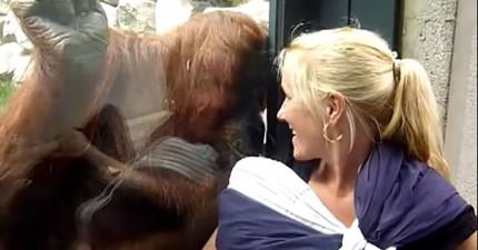 她原本要去動物園看動物,結果她懷裡的寶寶才是被看的那個!