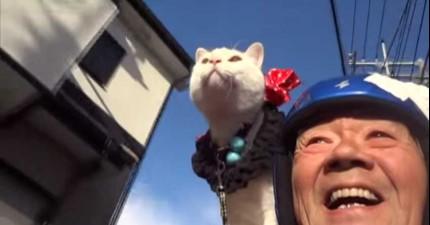 這個老先生不需要老伴,你看到貓咪為他做的事情後就會知道有貓咪相依為命就足夠了!