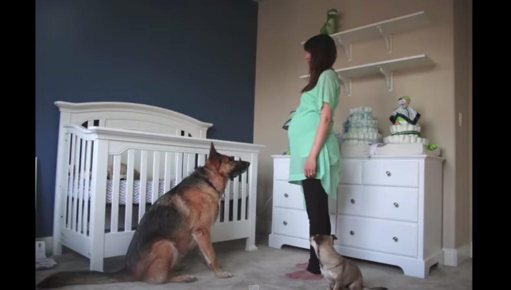他每天幫懷孕的妻子每天拍一樣的照片,到影片最後你就會感受到滿滿的「愛」!