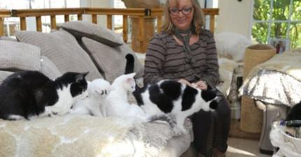 這名女子一年狠砸44萬在家收養了122隻貓,一路支持的老公說的話讓人感動萬分!