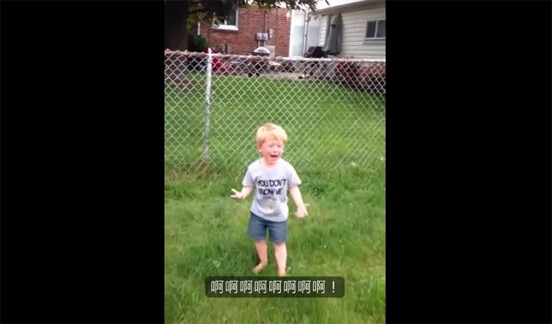 爸媽聽到兒子在庭院尖叫得好像快死掉,一看到他腳上的東西時就忍不住先拍下再說!