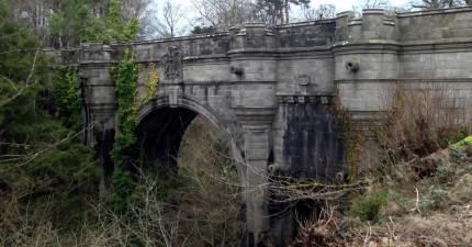 已經有600隻狗狗在這座橋上自殺...科學家終於找到可怕原因了!