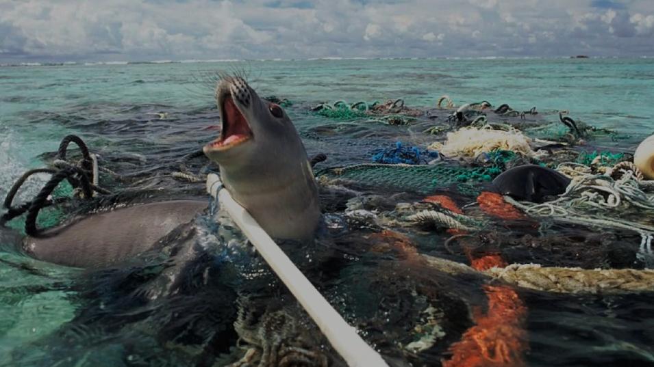 20歲少年研發出「讓海洋自己清潔」的海洋吸塵器,這會拯救我們脆弱的地球!