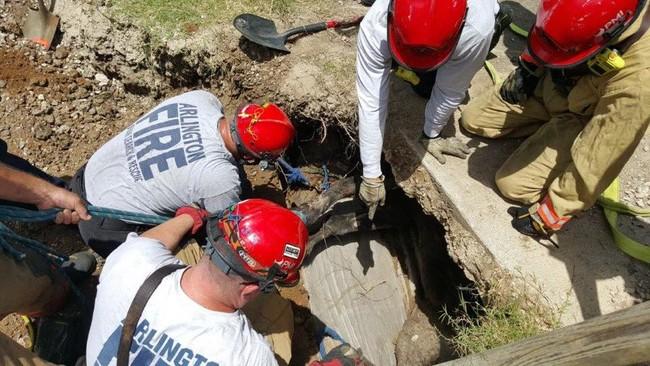 他們在地底下聽到微弱的哭聲,當挖了2小時看到「受害者是誰時」他們都不敢相信!