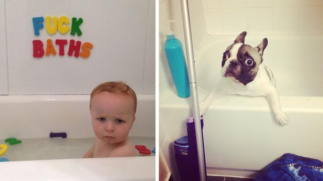 13個原因告訴你為什麼「養小孩」和「養狗狗」其實是同一件事!