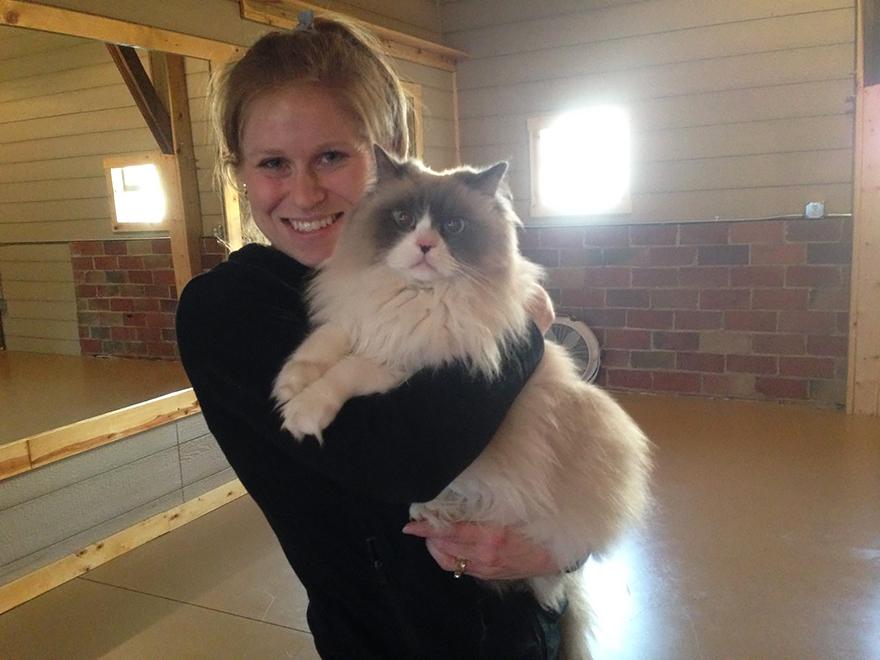 這些貓咪跑來跟學員一起練瑜伽,背後的原因卻「比可愛還要偉大百倍」!