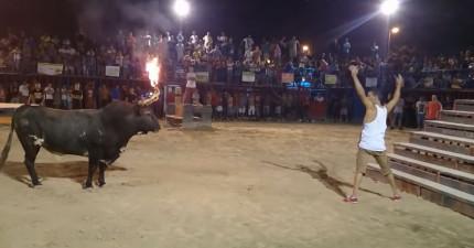 這就是為什麼你絕對不該挑釁一頭雙角著火的公牛。