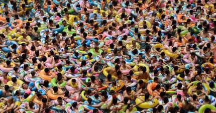 當夏天到的時候,你絕對不會想要到中國的游泳池裡游泳...