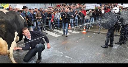 這場觀看人次破千萬的「激烈街頭槍戰」,不但沒被制止反而還得到網友熱烈稱讚!