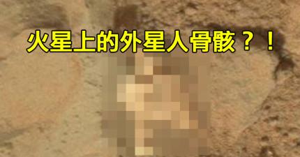 NASA流出的火星照上面竟然有外星人的骨骸?!