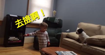 小男生一直教不會小狗狗怎麼撿球,結果絕望的時候才看到他們之間的真情。