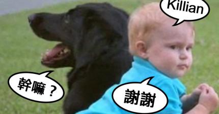 他們發現到狗狗對保母很有敵意,偷偷放了錄音機在沙發下才驚覺「好險提早發現」!