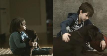 如果你有養狗的話,這個狗狗和男孩的成長故事會讓你流下最開心的眼淚。