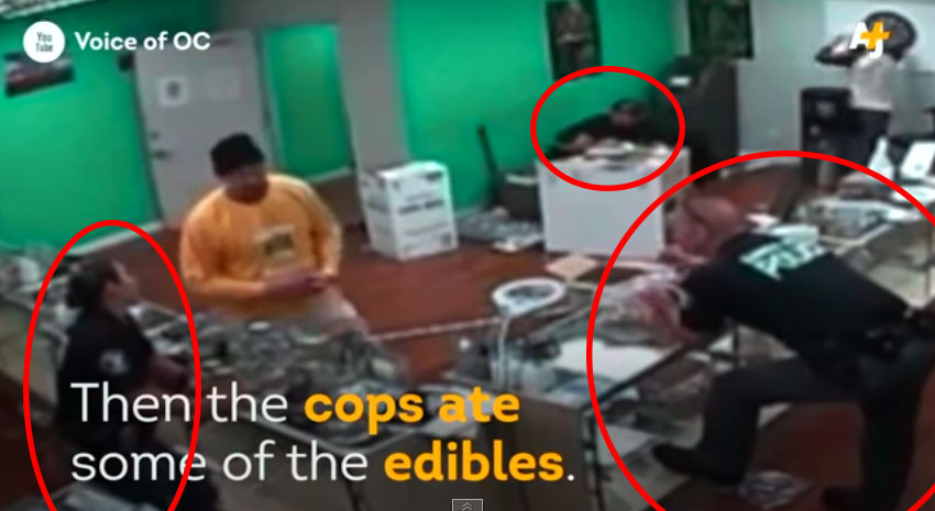 警察查封大麻商店,結果他們忘記拆下的監視器居然拍下他們開始吃大麻商品,開派對?!