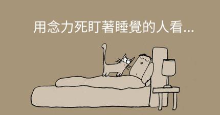 23個「如何當一隻貓」的完美訣竅,造成全世界貓咪瘋狂分享!