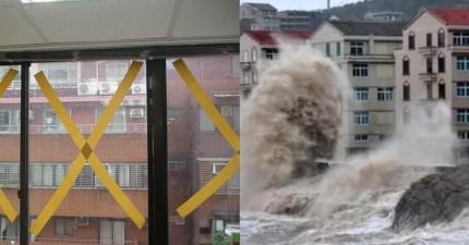氣象專家呼籲:颱風來襲請不要再浪費時間貼膠帶了!