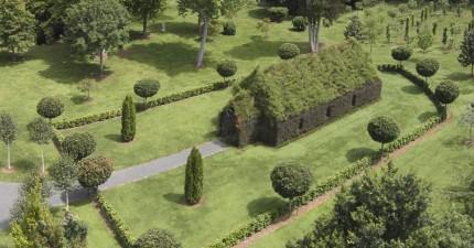 男子花了4年時間「種」出世界上最美「會呼吸的植物活教堂」,走進內部超美!