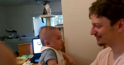 爸爸對3月大小寶寶說「我愛你」,結果寶寶居然奇蹟般的回覆了!