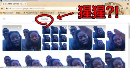 男子和朋友的合照被Google自動標籤成「猩猩」?!他的憤怒抗議馬上得到官方的回應...
