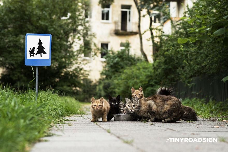 街上出現了許多迷你路標,背後的用意會讓你不能再同意更多了!