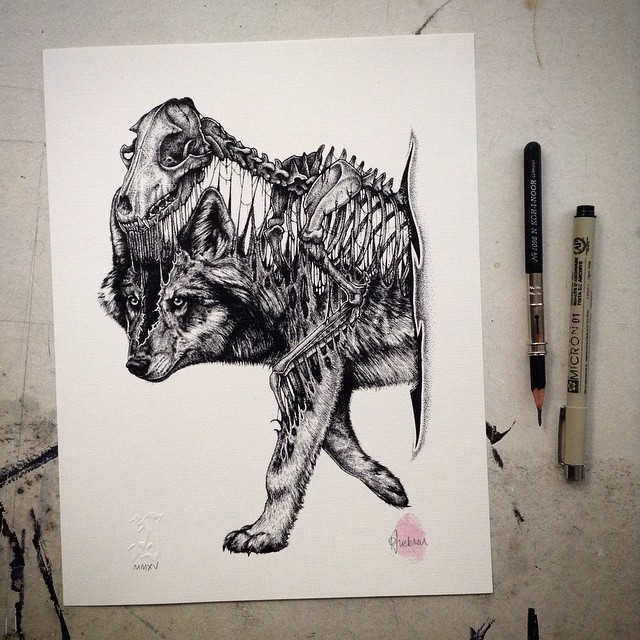 15張用最暴力方式讓你更了解動物的「骨頭硬扯出來」動物插畫。