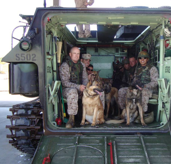 這隻出了400次任務一隻腿被炸毀的超級狗狗的故事,比《阿甘正傳》更會讓你感動!