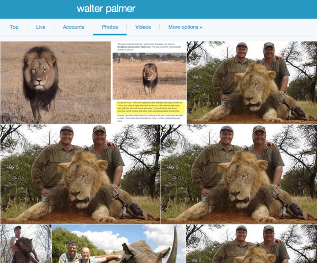 這個可惡牙醫殺了獅子還覺得自己沒有錯,結果網友發起了行動要讓他也完蛋。