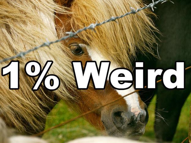 How weird?