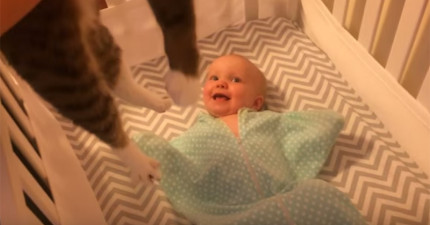 這個小寶寶上輩子可能跟貓咪是情人吧,因為只要媽媽一把貓咪抱過來時...