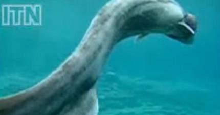 這隻在海中意外首次拍下的已存活3.8億年的「活化石」,絕對比《侏羅紀公園》還要可怕100倍!