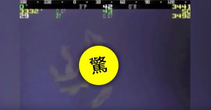 只有被目擊到100次的怪異生物終於被深海儀器拍下清楚影像了!怎麼有點猥瑣?!