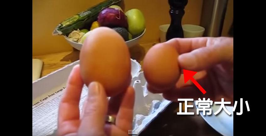 正常大小雞蛋