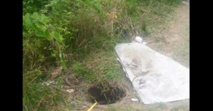 兩名男孩在野外意外發現這個小洞,探頭一看卻發現到人類最可恨的罪行。