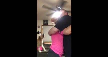 當有人抱抱但沒有包括這隻狗狗時,他就會整個超不爽,但看看他也加入時的可愛模樣!