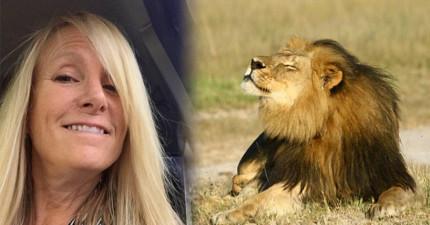 這頭獅子遭到牙醫殘殺引起全球公憤,但他透過動物靈媒要告訴大家...