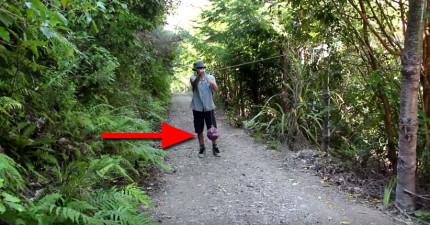 他安裝了一台監視器想要看看如果放一顆繩球在森林裡的話會發生什麼奇妙的事情。